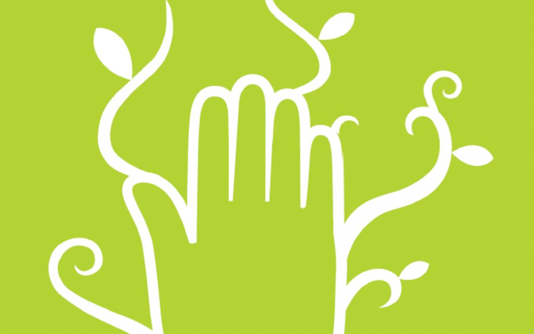Cinco principios de la economía social y solidaria