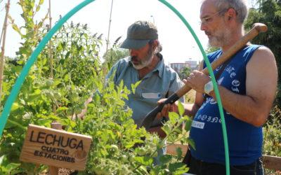 Los productos frescos y locales de la huerta llegan a Villaverde