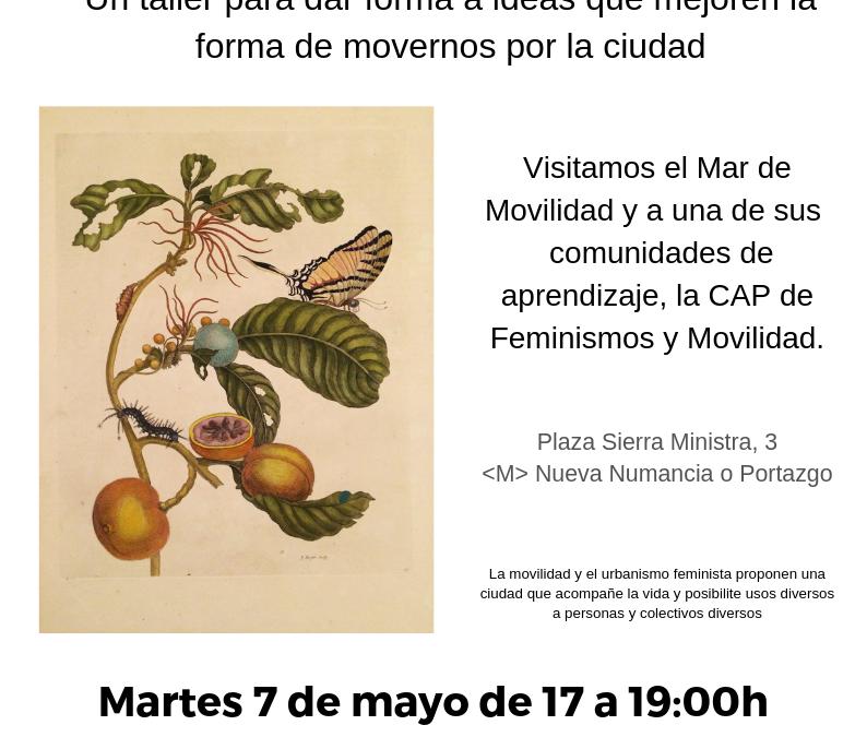 CAP Feminismos y Movilidad. Plasmando el feminismo en calles, plazas, herramientas y formas de movernos